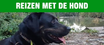 //www.andersreizen.be/eBusinessFiles/ImageFiles/Banners/hond.jpg