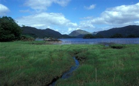 http://www.andersreizen.be/eBusinessFiles/ImageFiles/PhotoAlbum/Ierland Kerry Way/Kerry 99 Désiré Vervaeren 6.jpg