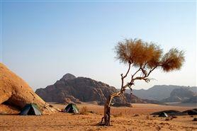 Jordanië - Hoogtepunten van een rijk woestijnland