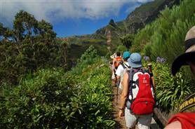 Portugal - Wandelparadijs Madeira