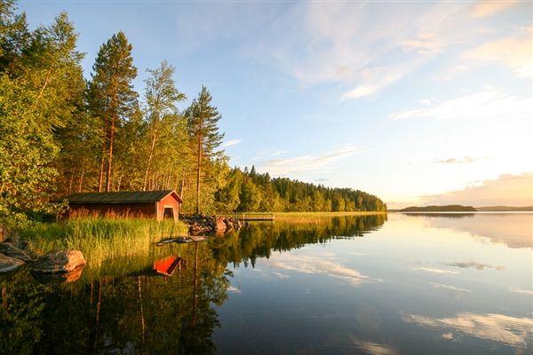 Bossen-en-meren-in-Zuid-Finland-Altero-singlereis