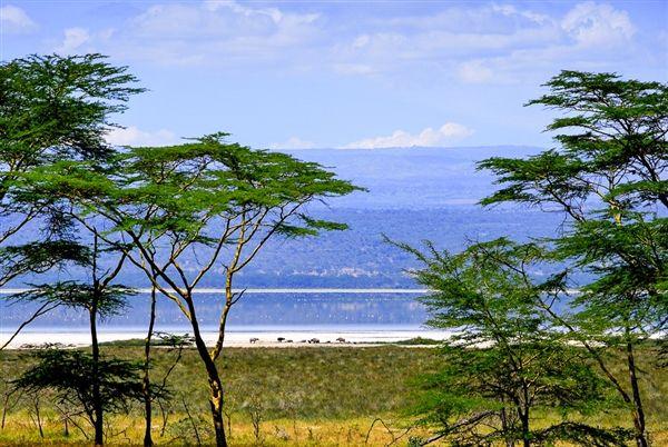 Oost-Afrika-op-zn-best