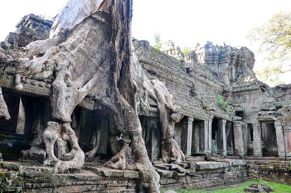 http://www.andersreizen.be/eBusinessFiles/ImageFiles/fotos/KH1AAA/cambodia_1396-2011-Koen-Huybrechts_export_w950.jpg