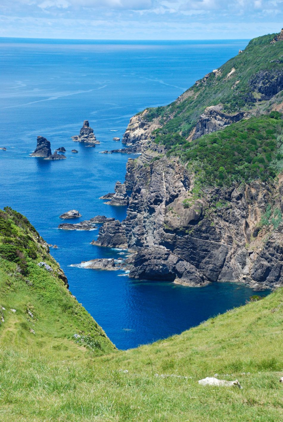 Portugal - De Azoren